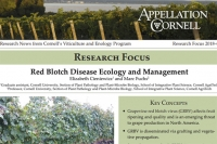 Research Focus - Red Blotch Disease Ecology and Management