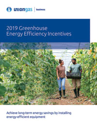 2019 Greenhouse Energy Efficiency Incentives