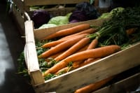 They're back, .... Patchwork Gardens amazingly tasty, locally grown, organic carrots!
