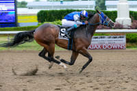 Had To Be Ivory Cruises To Victory In Ontario-Bred Maturity