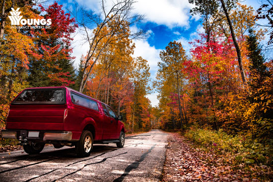 The Truth About Fall Driving Safety