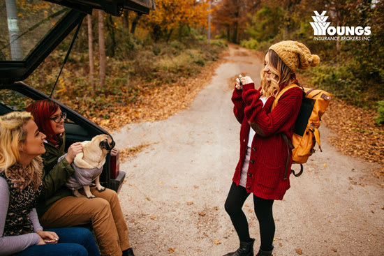 Fall in Love With These Stunning Fall Drives