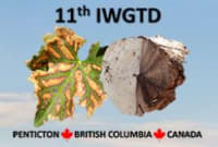 11th Annual International Workshop on Grapevine Trunk Diseases, 2019
