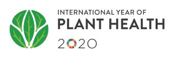 2020- International Year of Plant Health