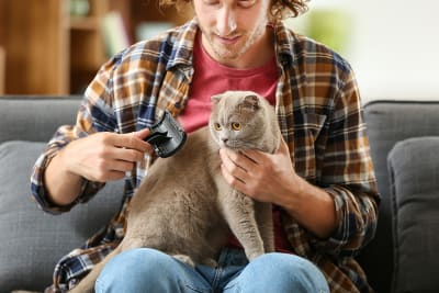 Grooming Basics for Cats & Dogs
