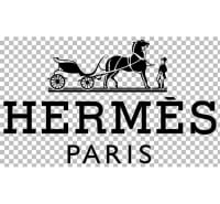 Cancellation Of The Saut Hermès At The Grand Palais 2020