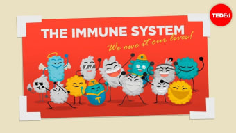Boost your immune system with FOOD!