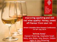Improving sparkling and still red wine quality - Presentation