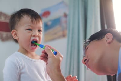 Brushing Your Toddler's Teeth: A Step-by-Step Guide