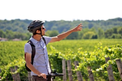 Niagara Segway Tours at Henry of Pelham Estate Family Winery
