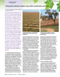 Vineyard nutrient needs vary with rootstocks and soils