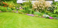 5 Best Landscaping Features for Homeowners on a Budget