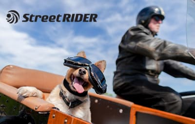 The Truth About Riding with Your Dog on Your Motorcycle