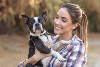 What vet services do pet insurance and pet wellness plans cover?