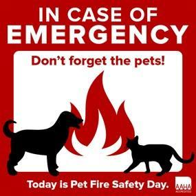 Are You And Your Pets Ready In Case Of A Fire?