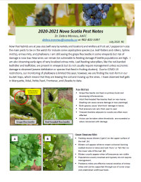 Survey and Evaluation on Viruses and Their Effects on Plants - Project Update