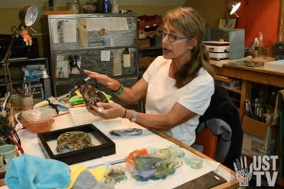 Gayle Temple - Explains Fused Glass