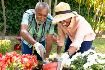 The Secret to a Healthy Garden is a Healthy Gardener