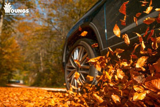 Simple Guidance for The Best Fall Car Inspection