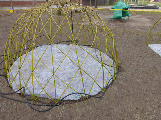 Building a Living Willow Play Hut and Tunnel