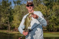 High Percentage Baits for Big Bass