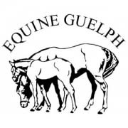 Equine Guelph ready to deliver more training for racing