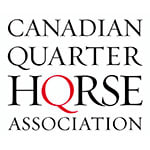 The 2020 AQHA Racing Canadian Champion Contenders