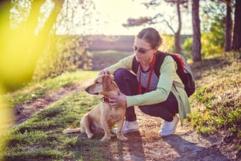 How do I know if my pet has Lyme disease?