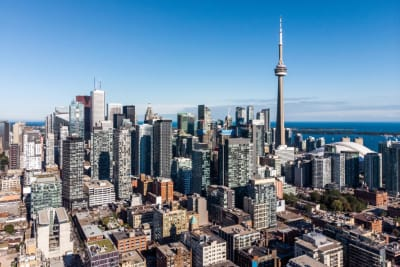 Toronto Real Estate Market Madness January 2021