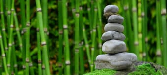 How to Create a Mini Zen Garden for Ultimate Peace