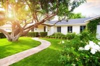 5 Tips To Keep Your Lawn Healthy This Year