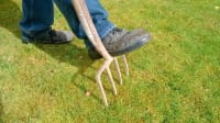 Aerating Your Lawn: Why, When, and How Is it Done?