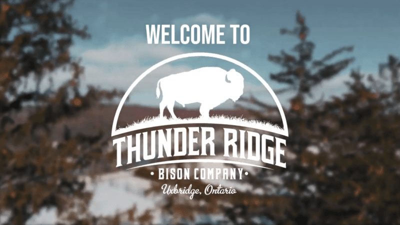 Welcome To Thunder Ridge Bison Co.