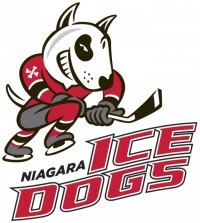 Go Ice Dogs Go! Pep Rally Friday