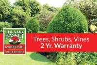 2-Year Warranty on Trees, Shrubs & Climbing Vines