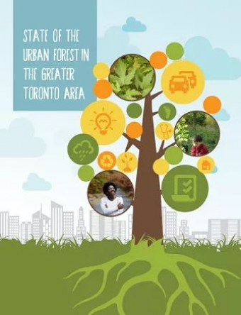 The First Report on the GTA's Forest Canopy Delivered at the Grey to Green Conference 2016