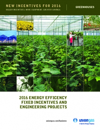 2016 ENERGY EFFICIENCY FIXED INCENTIVES AND ENGINEERING PROJECTS