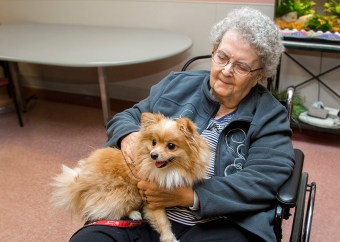 Power of pets: Program brings comfort to patients