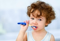 Choosing a Toothbrush for Your Toddler