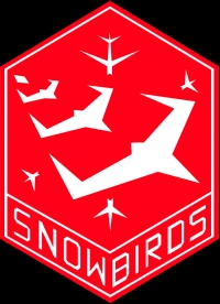 Snowbirds to Perform Aerial Show in Fort Erie