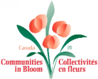 2017 Communities in Bloom Editions