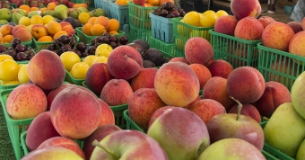 Have you checked out Twenty Valley's Farmers Markets?